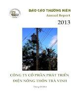 Báo cáo thường niên năm 2013 - Công ty Cổ phần Phát triển điện Nông thôn Trà Vinh