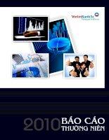 Báo cáo thường niên năm 2010 - Công ty cổ phần Chứng khoán Ngân hàng Công thương Việt Nam