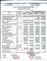 Báo cáo KQKD quý 4 năm 2010 - Công ty Cổ phần Kỹ nghệ Đô Thành