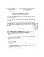 Nghị quyết đại hội cổ đông ngày 21-10-2009-2009 - Công ty cổ phần Đầu tư Căn nhà Mơ ước