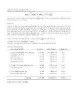 Báo cáo tài chính năm 2011 (đã kiểm toán) - Công ty Cổ phần Dược Đồng Nai