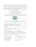 Bản cáo bạch - Công ty Cổ phần Đầu tư Xây dựng và Khai thác mỏ Vinavico