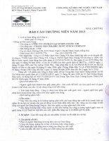 Báo cáo thường niên năm 2013 - Công ty Cổ phần Gạch men Chang Yih