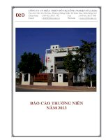Báo cáo thường niên năm 2013 - Công ty Cổ phần Phát triển Đô thị Công nghiệp Số 2