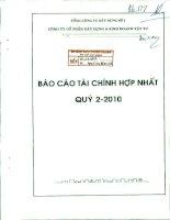 Báo cáo tài chính hợp nhất quý 2 năm 2010 - Công ty Cổ phần Xây dựng và Kinh doanh Vật tư