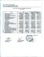Báo cáo KQKD hợp nhất quý 1 năm 2013 - Công ty Cổ phần Gemadept