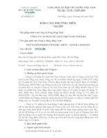 Báo cáo thường niên năm 2009 - Công ty Cổ phần Du lịch Việt Nam Vitours