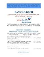 Bản cáo bạch - Công ty cổ phần Chứng khoán Ngân hàng Công thương Việt Nam