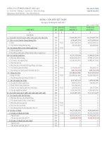 Báo cáo tài chính quý 2 năm 2011 - Công ty Cổ phần Địa ốc Đà Lạt