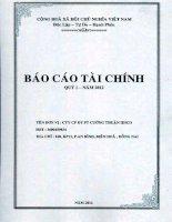 Báo cáo tài chính công ty mẹ quý 1 năm 2012 - Công ty Cổ phần Đầu tư Phát triển Cường Thuận IDICO