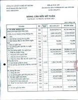 Báo cáo tài chính quý 1 năm 2013 - Công ty Cổ phần Kỹ nghệ Đô Thành
