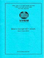 Báo cáo tài chính quý 1 năm 2015 - Công ty cổ phần Chế tạo máy điện Việt Nam - Hungari