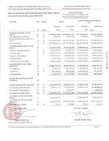 Báo cáo KQKD hợp nhất quý 2 năm 2011 - Công ty Cổ phần Tập đoàn Đức Long Gia Lai