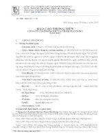 Báo cáo thường niên năm 2012 - Công ty Cổ phần Chế tạo Bơm Hải Dương