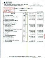 Báo cáo tài chính công ty mẹ quý 2 năm 2011 - Công ty Cổ phần Dịch vụ và Xây dựng Địa ốc Đất Xanh