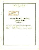 Báo cáo tài chính hợp nhất quý 1 năm 2011 - Công ty Cổ phần Đầu tư Phát triển Cường Thuận IDICO