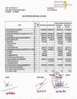 Báo cáo tài chính quý 4 năm 2012 - Công ty Cổ phần Địa ốc 11