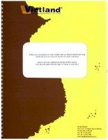 Báo cáo tài chính năm 2012 (đã kiểm toán) -  Công ty Cổ phần Tư vấn thiết kế và Phát triển đô thị