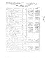 Báo cáo tài chính hợp nhất quý 1 năm 2010 - Tổng Công ty Phân bón và Hóa chất Dầu khí-CTCP