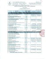 Báo cáo tài chính quý 2 năm 2012 - Công ty Cổ phần Chế biến Gỗ Thuận An