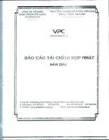 Báo cáo tài chính hợp nhất quý 4 năm 2010 - Công ty Cổ phần Dược phẩm Cửu Long