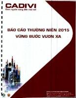 Báo cáo thường niên năm 2015 - Công ty cổ phần Dây Cáp Điện Việt Nam