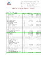 Báo cáo tài chính hợp nhất quý 3 năm 2009 - Công ty Cổ phần Thương nghiệp Cà Mau