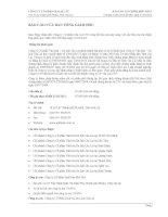 Báo cáo tài chính hợp nhất quý 1 năm 2012 - Công ty cổ phần Gia Lai CTC