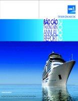 Báo cáo thường niên năm 2009 - Công ty Cổ phần Tập đoàn Công nghệ CMC