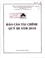 Báo cáo tài chính quý 3 năm 2010 - Công ty Cổ phần Gạch men Chang Yih
