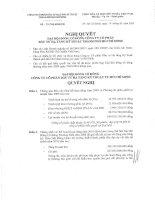 Nghị quyết đại hội cổ đông ngày 19-3-2010 - Công ty cổ phần Đầu tư Hạ tầng Kỹ thuật T.P Hồ Chí Minh