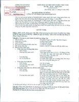 Nghị quyết đại hội cổ đông ngày 12-01-2011 - Công ty Cổ phần Tập đoàn Hapaco