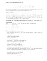 Báo cáo tài chính công ty mẹ quý 2 năm 2011 (đã soát xét) - Công ty Cổ phần Tập đoàn Đại Châu