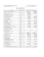 Báo cáo tài chính quý 3 năm 2011 - Công ty Cổ phần Thương mại Bia Hà Nội