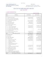 Báo cáo tài chính hợp nhất quý 2 năm 2009 - Công ty Cổ phần Nông dược H.A.I