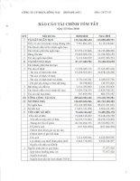 Báo cáo tài chính quý 3 năm 2010 - Công ty Cổ phần Nhựa Đồng Nai