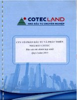 Báo cáo tài chính hợp nhất quý 4 năm 2015 - Công ty Cổ phần Đầu tư và Phát triển Nhà đất COTEC