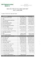 Báo cáo tài chính hợp nhất quý 4 năm 2009 - Công ty cổ phần Gia Lai CTC