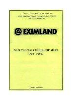 Báo cáo tài chính hợp nhất quý 1 năm 2013 - Công ty cổ phần Bất động sản E Xim