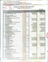 Báo cáo tài chính hợp nhất quý 2 năm 2014 - Công ty Cổ phần Dịch vụ Ô tô Hàng Xanh