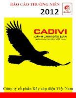 Báo cáo thường niên năm 2012 - Công ty cổ phần Dây Cáp Điện Việt Nam