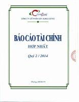 Báo cáo tài chính hợp nhất quý 2 năm 2014 - Công ty Cổ phần Xây dựng Cotec