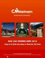 Báo cáo thường niên năm 2014 - Công ty cổ phần Xây dựng và Nhân lực Việt Nam
