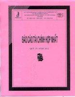 Báo cáo tài chính hợp nhất quý 4 năm 2012 - Công ty Cổ phần Ngoại thương và Phát triển Đầu tư Thành phố Hồ Chí Minh