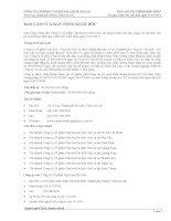 Báo cáo tài chính hợp nhất quý 1 năm 2011 - Công ty cổ phần Gia Lai CTC