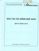 Báo cáo tài chính hợp nhất quý 4 năm 2013 - Công ty cổ phần Xây dựng và Nhân lực Việt Nam