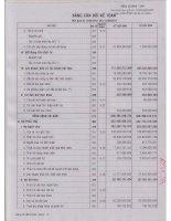 Báo cáo tài chính công ty mẹ quý 2 năm 2011 - Công ty Cổ phần Đầu tư và Thương mại DIC