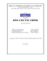 Báo cáo tài chính quý 3 năm 2007 - Công ty Cổ phần Đầu tư CMC