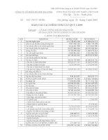 Báo cáo tài chính quý 1 năm 2009 - Công ty Cổ phần Đồ hộp Hạ Long