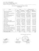 Báo cáo tài chính hợp nhất quý 3 năm 2011 - Công ty Cổ phần Gemadept
